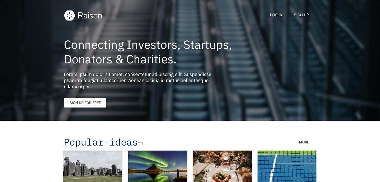 Raison (Desktop website design)